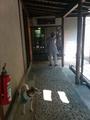 1405浜名湖 (56).jpg