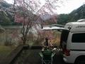 1604丹沢湖日帰り (12) (800x600).jpg