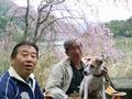 1604丹沢湖日帰り (6) (800x600).jpg